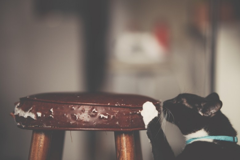 Image of a cat scratching furniture with sharp nails