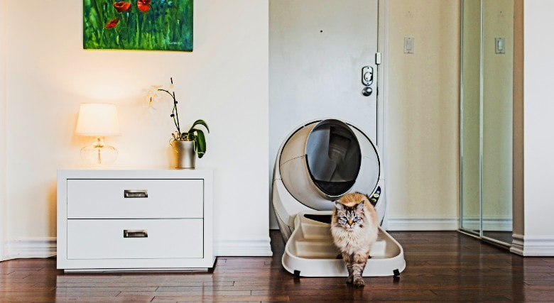 image of a cat coming out of the futuristic litter robot litter box