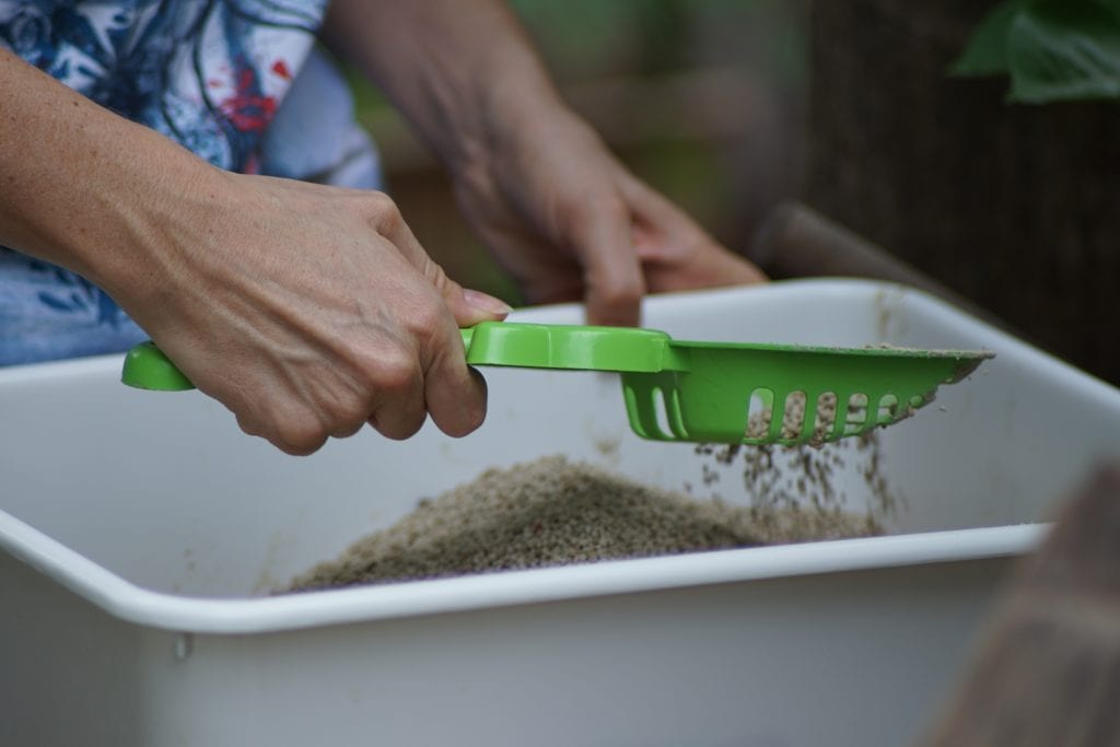 Image of a litter box being scooped.
